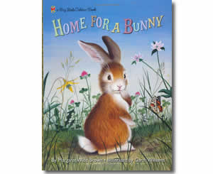 Home for a Bunny - Fun Easter Books for Kids