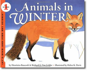 Animals in Winter - Groundhogs Day Books for Kids
